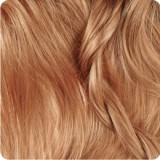 رنگ موی بیول – بلوند بلوطی روشن - 8.81