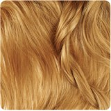 رنگ موی بیول - بلوند شکلات عسلی روشن - 8.83